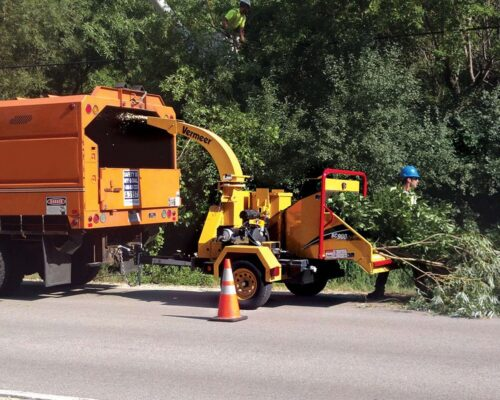 Commercial Tree Services-Wimauma FL Tree Trimming and Stump Grinding Services-We Offer Tree Trimming Services, Tree Removal, Tree Pruning, Tree Cutting, Residential and Commercial Tree Trimming Services, Storm Damage, Emergency Tree Removal, Land Clearing, Tree Companies, Tree Care Service, Stump Grinding, and we're the Best Tree Trimming Company Near You Guaranteed!