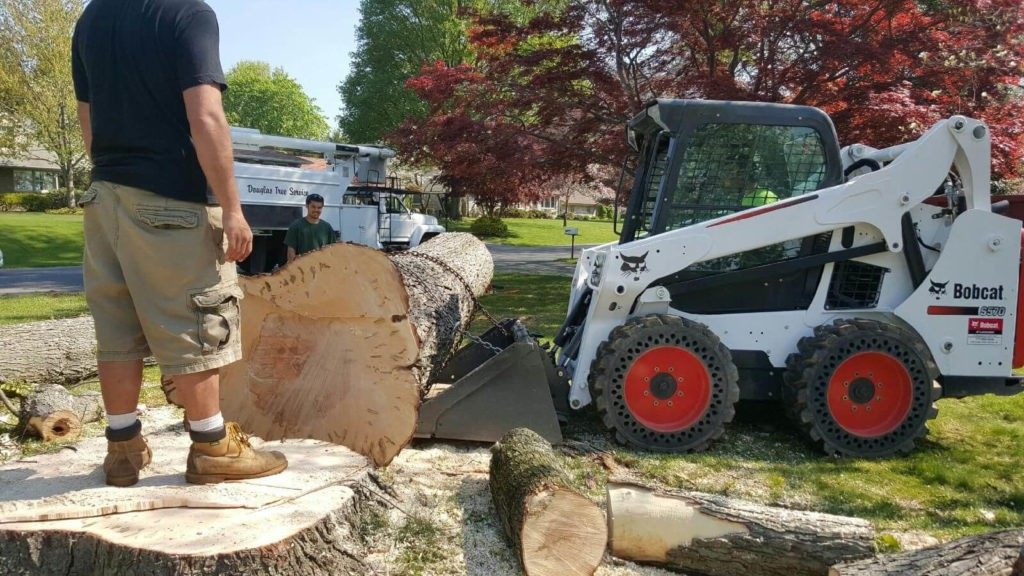 Services-Wimauma FL Tree Trimming and Stump Grinding Services-We Offer Tree Trimming Services, Tree Removal, Tree Pruning, Tree Cutting, Residential and Commercial Tree Trimming Services, Storm Damage, Emergency Tree Removal, Land Clearing, Tree Companies, Tree Care Service, Stump Grinding, and we're the Best Tree Trimming Company Near You Guaranteed!