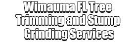 Wimauma FL Tree Trimming and Stump Grinding Services Logo-We Offer Tree Trimming Services, Tree Removal, Tree Pruning, Tree Cutting, Residential and Commercial Tree Trimming Services, Storm Damage, Emergency Tree Removal, Land Clearing, Tree Companies, Tree Care Service, Stump Grinding, and we're the Best Tree Trimming Company Near You Guaranteed!